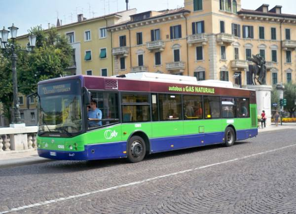 Verona, la politica vota per il lotto unico