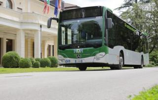 autobus treviso mom mobilità di marca