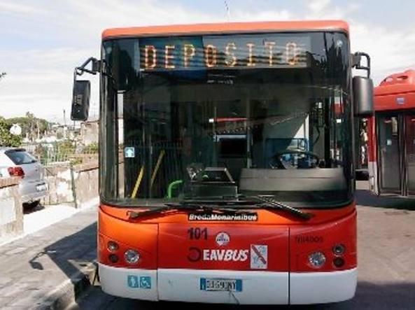 autobus eav campania