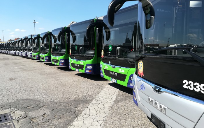 MAN Lion's City - Mercato bus Italia,