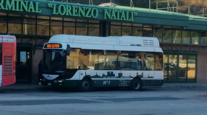 L'Aquila autobus urbani