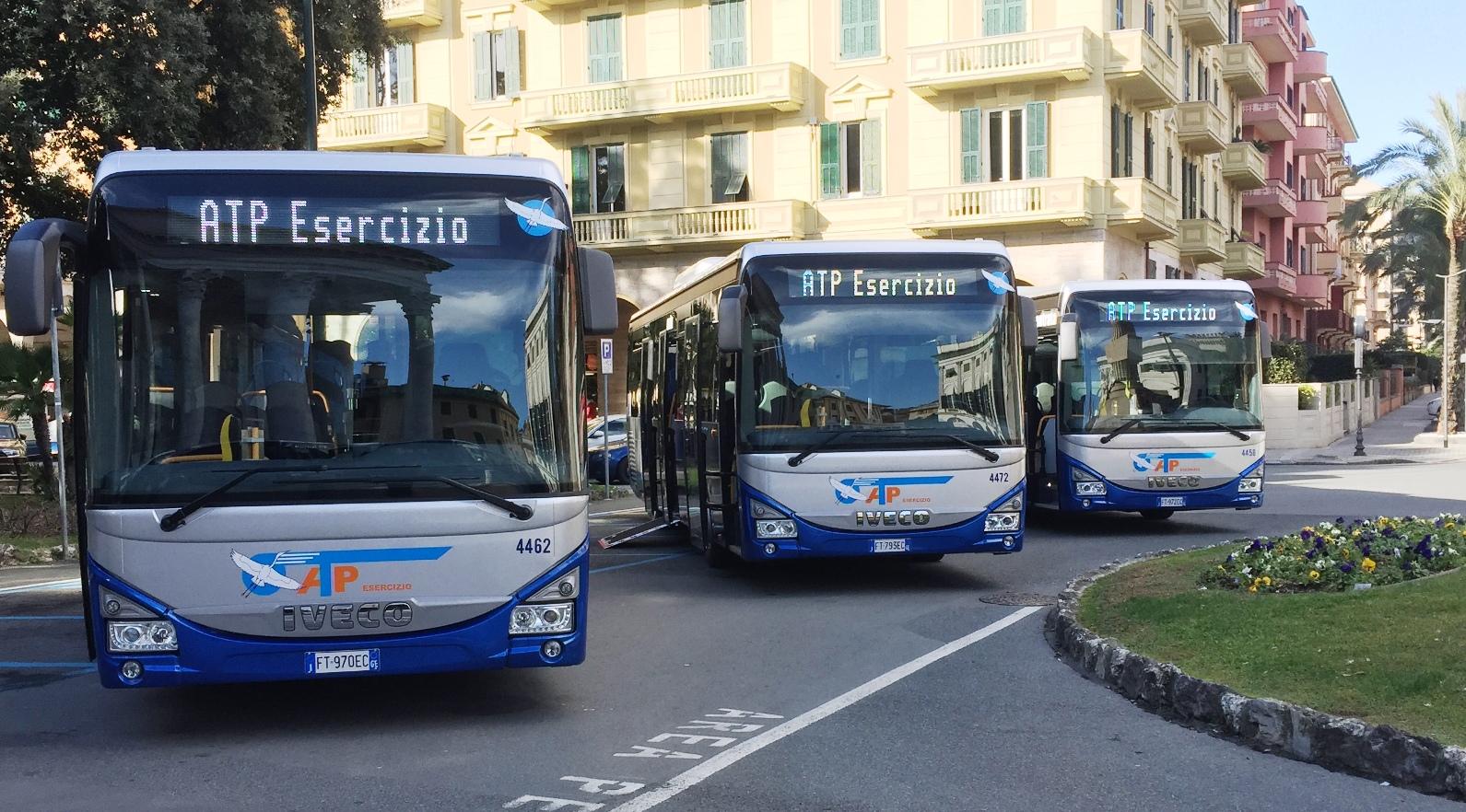 ricerca conducenti autobus