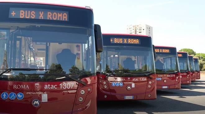 Mercato autobus Italia 2019
