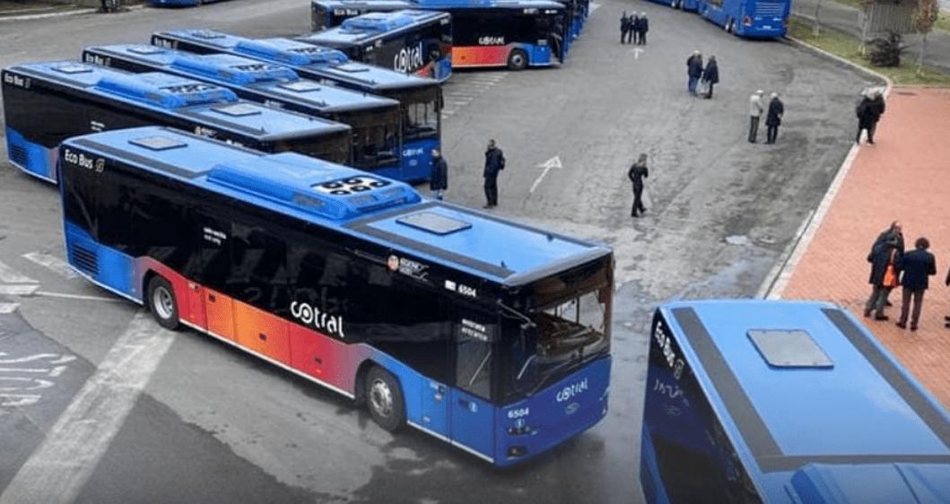 cotral bando servizi turistici